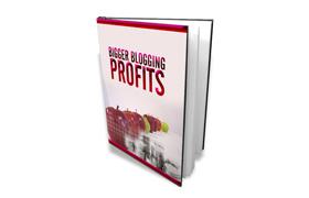 Bigger Blogging Profits Edition 2