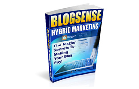 Blogsense Hybrid Marketing