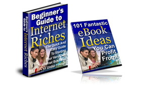 Beginner's Guide To Internet Riches