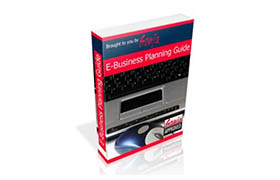 E-Business Planning Guide