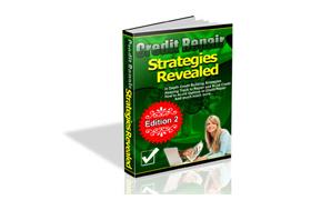 Credit Repair Strategies Reavealed
