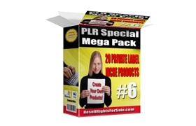 PLR Special Mega Pack Number 6