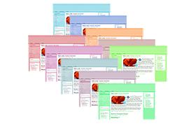 Boutique Blogger Drupal HTML Joomla WP Themes