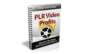 PLR Video Profits