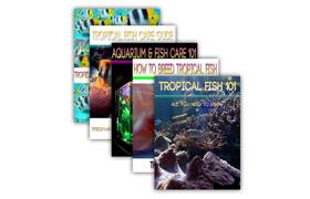 Big Collection Aquarium Fish Titles