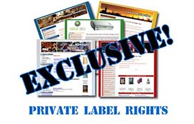 85 Exclusive Niche Sites 2nd Release