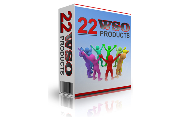 22 WSO Products