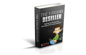 The 5 Figure Reseller