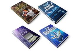 Webmasters 100 PLR Series