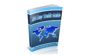 28 Day Traffic Guide