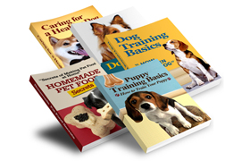 Dog Training Essentials Collection