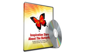 Inspiration Story About The Butterfly