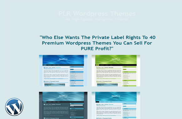 40 PLR Wordpress Themes