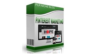 Pinterest Marketing Niche WP Theme