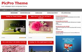 Pic Pro Niche WordPress Theme
