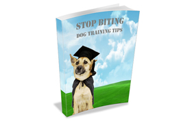 Stop Biting