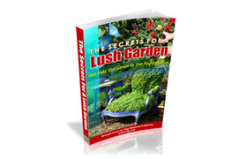 The Secrets For A Lush Garden Edition 2