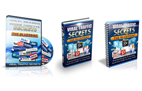 Viral Traffic Secrets Blueprint Audio Video and Guide