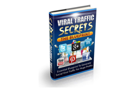 Viral Traffic Secrets Blueprint Guide