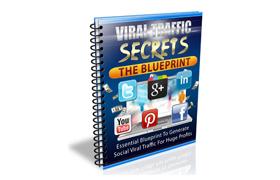 Viral Traffic Secrets Blueprint Report
