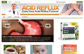 Acid Reflux WP Niche Theme