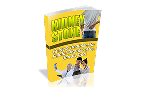 Kidney Stone WP Ebook Template