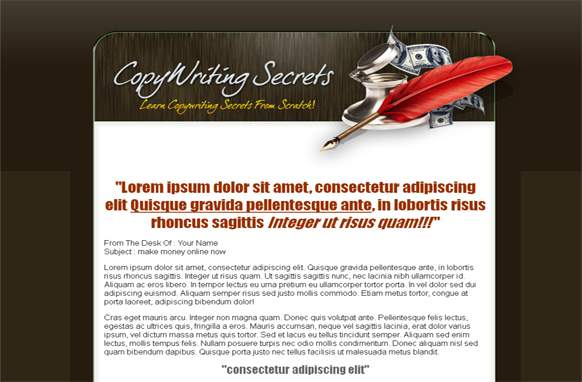 Copy Writing HTML and PSD Minisite Template