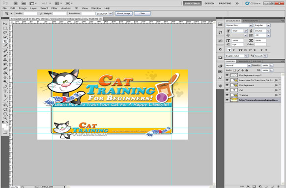Cat Training For Beginners PSD Template