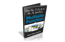Learn How To Use WordPress Multisite Function