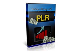 Making Money With PLR