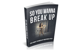 So You Wanna Break Up