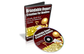 Brandable Report Creation For Newbies
