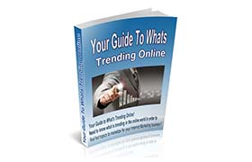 Your Guide To Whats Trending Online