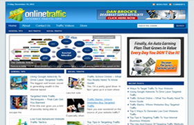 Online Traffic WP Niche Theme