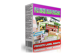 PLR Niche Blog Package