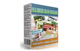 PLR Niche Blog Package WP Themes