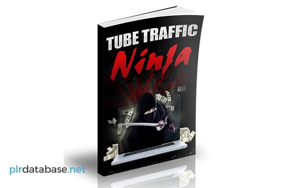 Tube Traffic Ninja