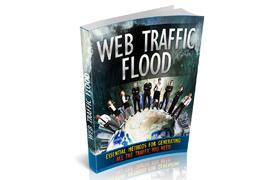 Web Traffic Flood