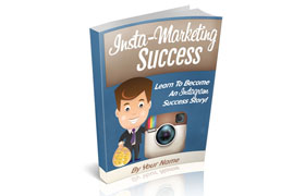 Insta Marketing Success