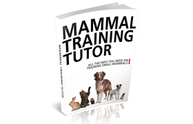 Mammal Training Tutor Edition 2