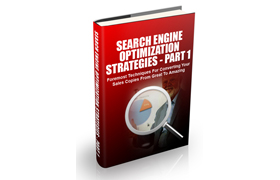 Search Engine Optimization Strategies – Part 1