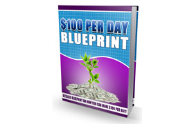 $100 Per Day Blueprint