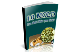 10 Mold
