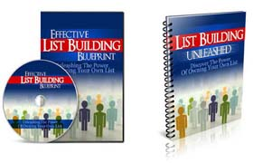 Effective List Building Blueprint