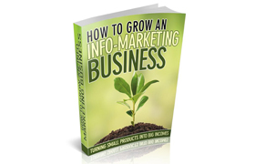 How To Grow An Info-Marketing Business Plus Audio