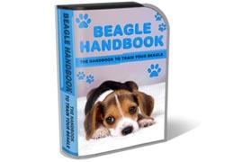 Beagle Handbook WP HTML PSD Template