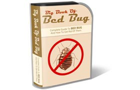 Bed Bugs HTML PSD Template