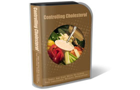 Controlling Cholesterol WP HTML PSD Template