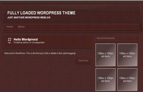 Velvet Leather WP Theme
