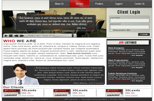 Business Niche Premium PSD Website Template
